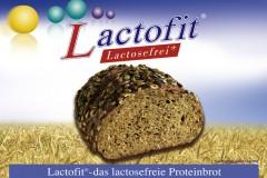 PLK-Lactofit